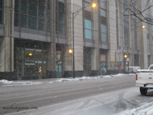 Another picture of the falling snow.  Boy do I miss it.